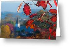 Red Leaves Blue Mountain Greeting Card by Dorothy Walker