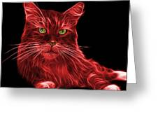 Red Maine Coon Cat - 3926 - Bb Greeting Card
