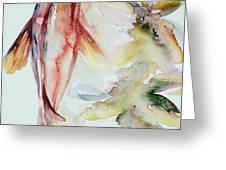Red Mangrove Greeting Card by Ashley Kujan