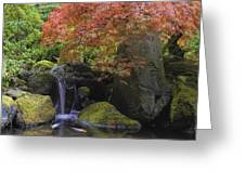 Red Maple Tree Over Waterfall Pond Greeting Card