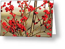 Red On Gold Greeting Card