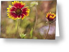 Red On Yellow Greeting Card