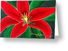 Red Oriental Daylily Greeting Card