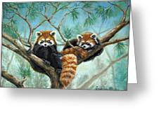 Red Pandas Greeting Card