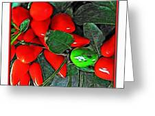 Red Pepper Plant Greeting Card