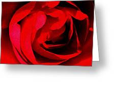 Red Petals Greeting Card by Scott Allison