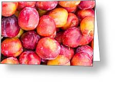 Red Plums Greeting Card