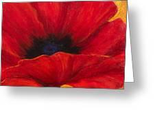 Red Poppi I Greeting Card