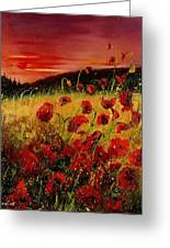 Red Poppies And Sunset Greeting Card