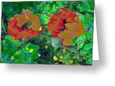 Red Poppies Flowers Greeting Card