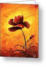 Red Poppy 012 Greeting Card