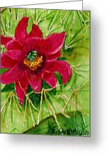 Red Prickly Pear Greeting Card