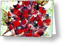 Red Purple Flower Greeting Card