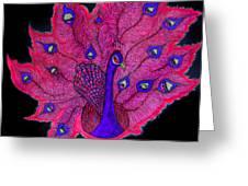 Red - Purple Peacock Greeting Card