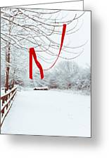 Red Ribbon In Tree Greeting Card by Amanda Elwell