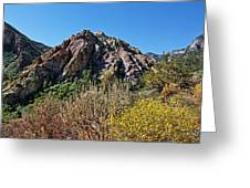 Red Rock Canyon With Foliage Greeting Card