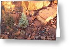 Red Rock Christmas Greeting Card