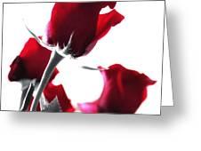 Red Rose Color Block 2 Greeting Card