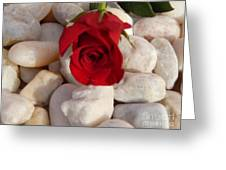 Red Rose On River Rocks Greeting Card