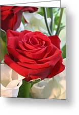 Red Rose With Garden Background  Greeting Card