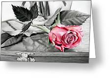 Red Rosebud Greeting Card