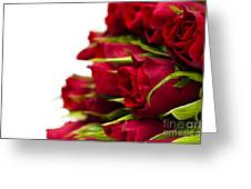 Red Roses Greeting Card by Anne Gilbert