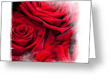 Red Roses. Elegant Knickknacks Greeting Card