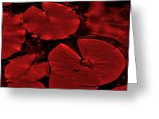 Red Ruby Tuesday Greeting Card