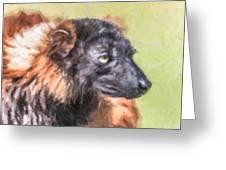 Red-ruffed Lemur Greeting Card