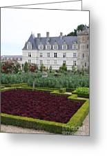Red Salad And Cabbage Garden - Chateau Villandry Greeting Card