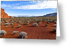 Red Sand In The Mojave Greeting Card