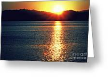 Red Sea Gold Greeting Card