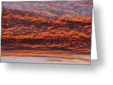 Red Sky Greeting Card by Michal Boubin