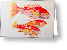 Red Snapper Family Painted Greeting Card