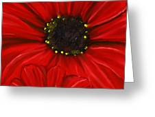 Red Spectacular- Red Gerbera Daisy Painting Greeting Card