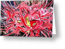 Red Spider Lily Flower Painting Greeting Card