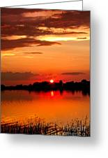 Red Sunset Beauty Greeting Card