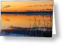 Red Sunset. Valencia Greeting Card