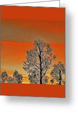 Red Sunset With Trees Greeting Card