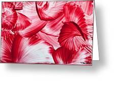 Red Swirls Background Greeting Card