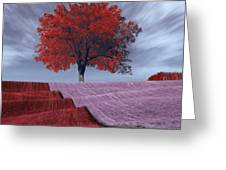 Red Tree In A Field Greeting Card