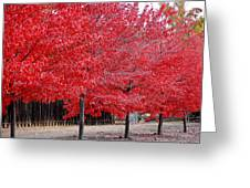 Red Tree Line Greeting Card