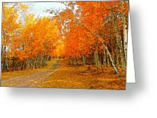 Red Tree Rd Greeting Card