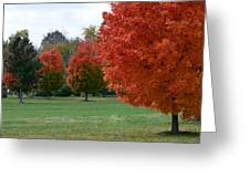 Red Trees 2 Greeting Card