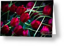 Red Tulip River Greeting Card