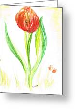 Red Tulip -of Amsterdam   Greeting Card