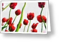Red Tulips From The Bottom Up Triptych Greeting Card