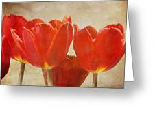 Red Tulips In Art Greeting Card