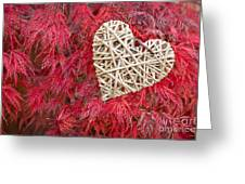 Red Valentine Greeting Card