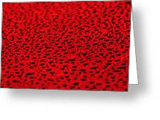 Red Water Drops On Water-repellent Surface Greeting Card